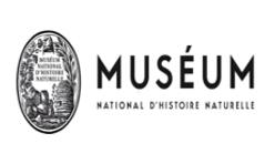 Travaux de rénovation du système de climatisation de la Grande Galerie de l'Evolution - Muséum National Histoire Naturelle - Île de France